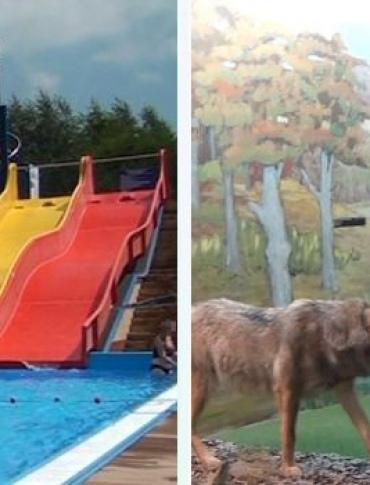 SONDA: Muzeum Przyrodnicze i baseny to atrakcje Ustrzyk Dolnych. Co jeszcze ciągnie w Bieszczady? (FILM)